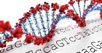 Τεστ γενετικής προδιάθεσης στη ΔΕΠ-Υ