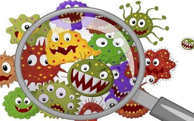 Μην πανικοβάλεστε με τα μικρόβια γύρω σας!