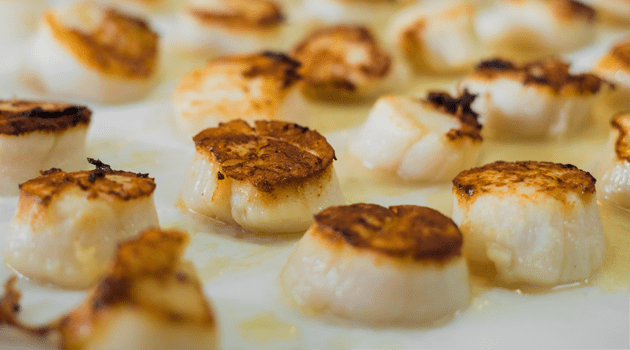 tasty-cooked-scallops